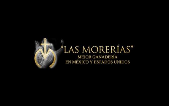 Las Morerias. Equipo de doma en Madrid