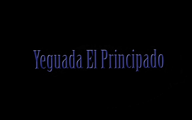 Yeguada El Principado