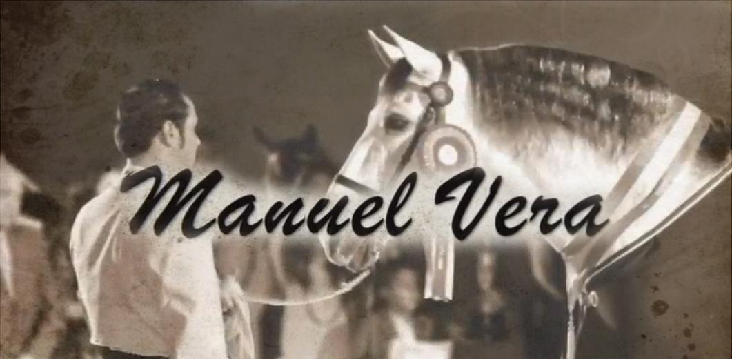 Homenaje a Manuel Vera, Palma del Río