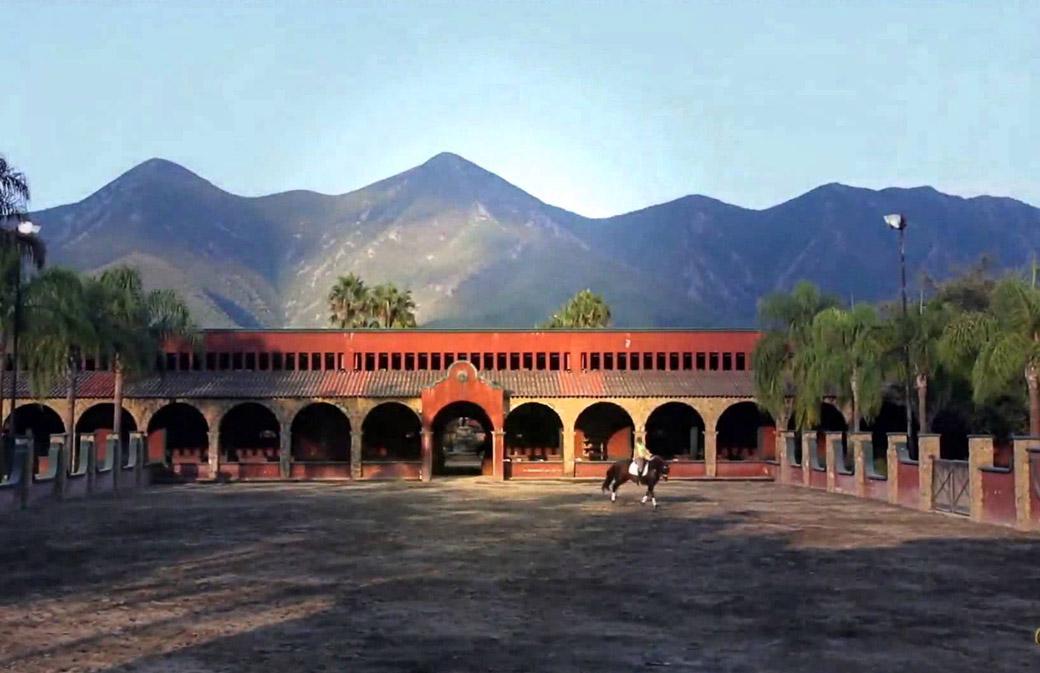 Yeguada Las Morerías. Ganadería de caballos españoles más laureada de México